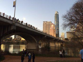 Bats, Bats, Bats! Congress Bat Bridge. NaNuNaNuNa...NuNa...Bat Bridge.